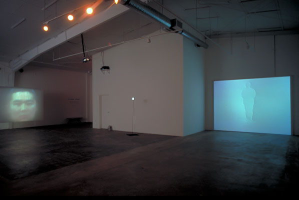 Shin-il Kim, Video works